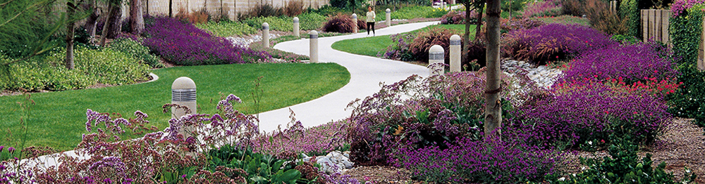Commercial Landscaping in Southern California