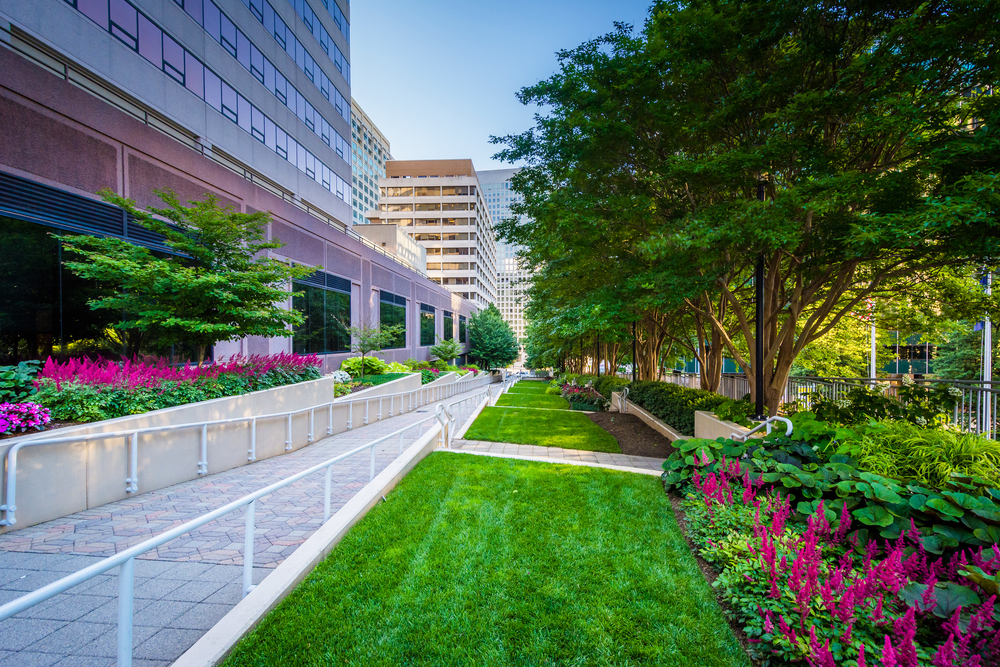 Commercial Landscape Maintenance in Southern California, Los Angeles, Orange County, Riverside, San Diego